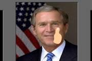 Slap Bush